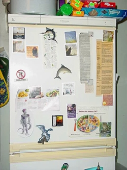 The Taylor fridge. Yes, that IS Furiizaa on the freezer...